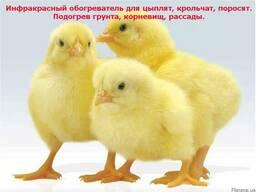 Электрический коврик-сушилка (подогрев для цыплят, грунта)