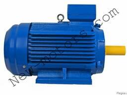 АИР200L2 (АИР 200 L2) 45 кВт 3000 об/мин