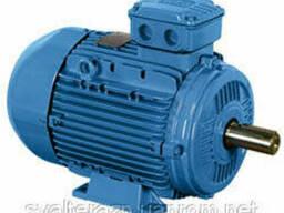 Электродвигатели низкого напряжения WEG Серия W21