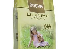 Enova lifetime growing корм для собак ультра премиум