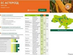 ЕС Астероид кукуруза купить, Астероид цена, фао 290