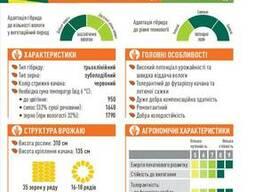 ЕС Москито кукуруза купить, Москито цена, фао 350