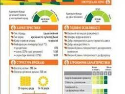 ЕС Сириус кукуруза купить, кукуруза цена, фао 200