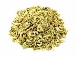 Фенхель семена (Египет)