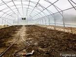 Фермерские туннельные теплицы под пленку