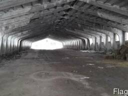 Фермерский комплекс для производства свиней, развед. КРС
