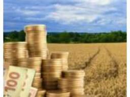 Фермерское Хозяйство продам без земли, ндс,4 группа