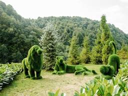 Фигур из искусственного газона, топиарии, арт-объекты для парков, садов.
