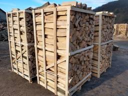 Firewood beech