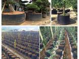 Горшок для растений AIR-POT - фото 3