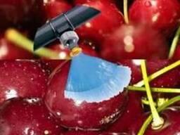 Форсунки для мойки фруктов и ягод