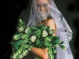 Фотохудожник на весілля Юрій Бригінець
