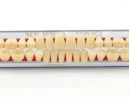 Гарнитур Полный Зубы Акриловые Yamahachi