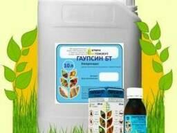 Гаупсин инсекто-фунгицид защита от болезней и вредителей