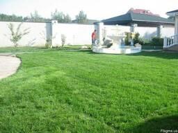 Газон, рулонный газон, укладка, системы автоматического поли
