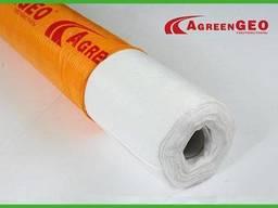 Геотекстиль Agreen GEO П-120 (3, 2х50)