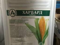 Гербіцид досходовий на кукурудзу Харвард ( аналог Харнес)