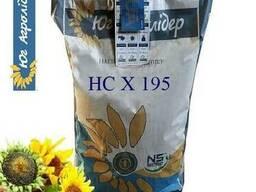 Семена подсолнечника НС Х195 классический Юг Агролидер