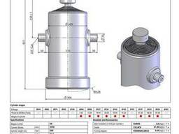 Гидроцилиндр Binotto B DWR 9-1795-269 (подкузовной)