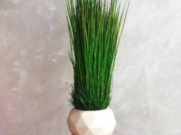 Гипсовое кашпо MiNature Moss со стабилизированой травой Фестука