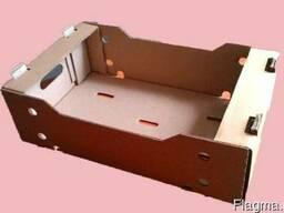 Гофролоток 500*300*150 мм. для огурцов и помидоров.