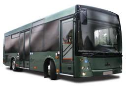 Городской автобус МАЗ 206
