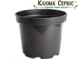 Горшки для рассады 3 л (кр), Kloda (Польша)