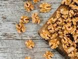 Грецкий орех (в скорлупе, очищенный вид). CEVIZ 2020 - фото 1