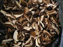 Гриби білі сушені, грибы