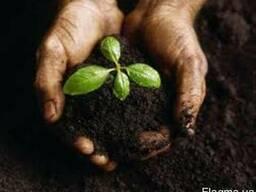 Грунт растительный для сада и огорода