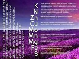 """Органические микроудобрения BioRosT """"Старт"""" гуминовые"""