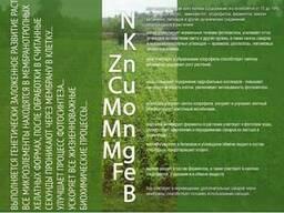 """Гумат калия BioRosT """"Универсальное"""" Микроудобрение"""