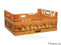 Хлебные ящики пластмассовые
