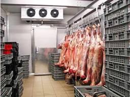 Холодильна камера для зберігання м'яса - підбір, монтаж