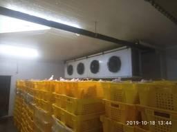 Холодильна камера для зберігання птиці, курятини - монтаж по Україні
