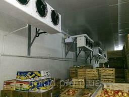 Холодильная камера для хранения фруктов (фруктохранилище)