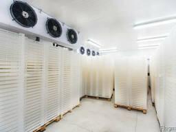Холодильная камера для хранения курицы