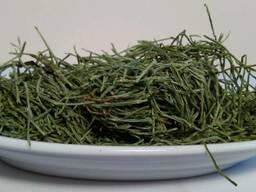 Хвощ полевой(трава)