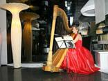 Игра на арфе, арфистка, арфа, заказать живую музыку для встр - фото 2