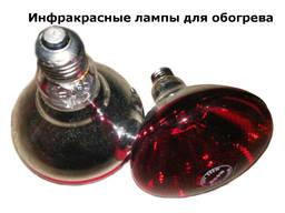 Инфракрасная лампа для обогрева