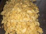 Инфракрасный сушильный шкаф Фермер для сушки яблочных чипсов - фото 7