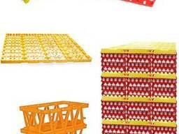 Ящики, лотки, дивайдери для куриних, гусиних, перепелиних яєць