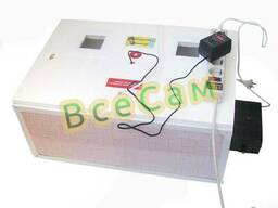 Инкубатор автоматический «Курочка Ряба» ИБ-100 вместимостью