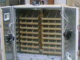 Инкубатор на 2500 яиц автомат. инкубаторы от 115 до 3000 яиц