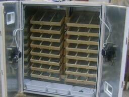 Инкубатор на 300 яиц автомат. инкубаторы от 115 до 3000 яиц