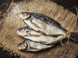 Ищу поставщиков рыбы