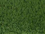 Искусственная декоративная трава Condor Grass (Бельгия) - фото 1