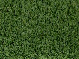 Искусственная декоративная трава Condor Grass (Бельгия)