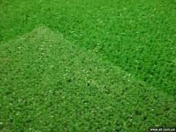Искусственная трава (газон) Киев