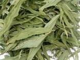Иван чай (лист сухой) - фото 1